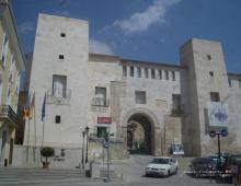 Palau dels Milà i Aragó